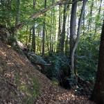 Les Myrtilles - Extérieur - Bois